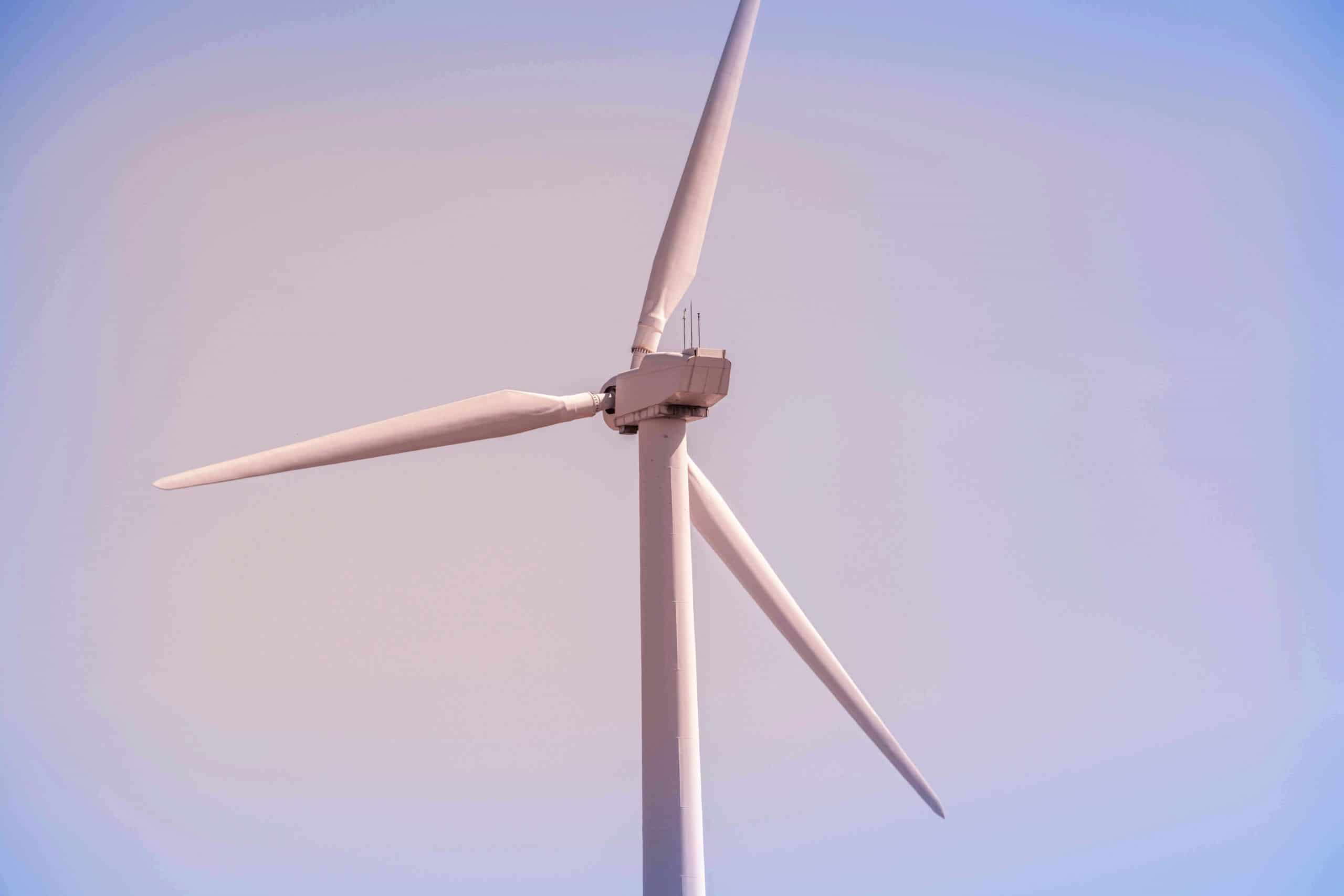 Environmental Monitoring for Offshore Wind Development