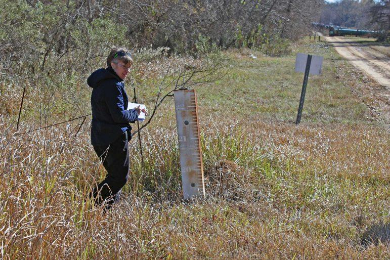 Joyce Dunkin of LimnoTech working on a field investigation